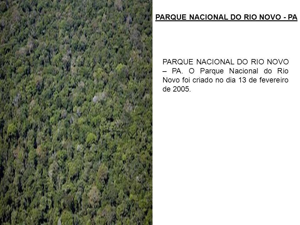 PARQUE NACIONAL DO RIO NOVO - PA