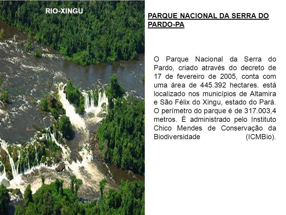 RIO-XINGU PARQUE NACIONAL DA SERRA DO PARDO-PA