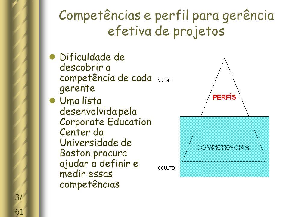 Competências e perfil para gerência efetiva de projetos