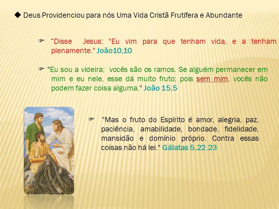  Deus Providenciou para nós Uma Vida Cristã Frutífera e Abundante