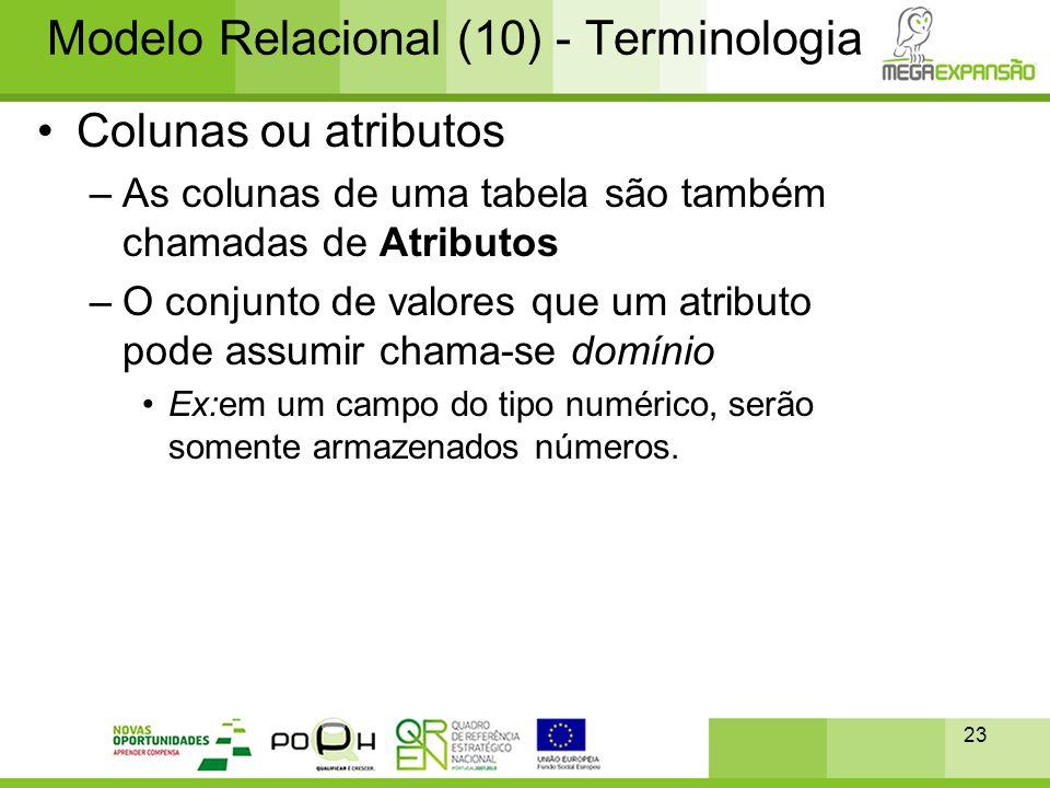 Modelo Relacional (10) - Terminologia
