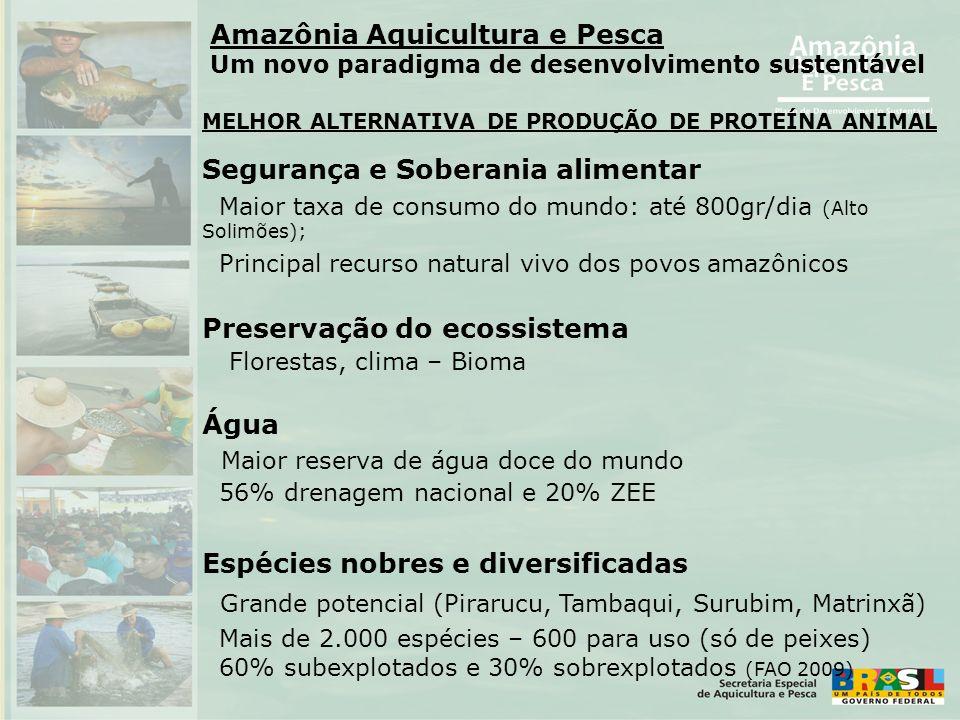Amazônia Aquicultura e Pesca