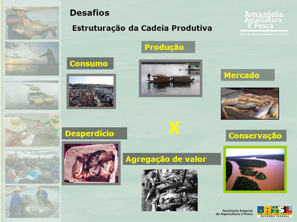 X Desafios Estruturação da Cadeia Produtiva Produção Consumo Mercado