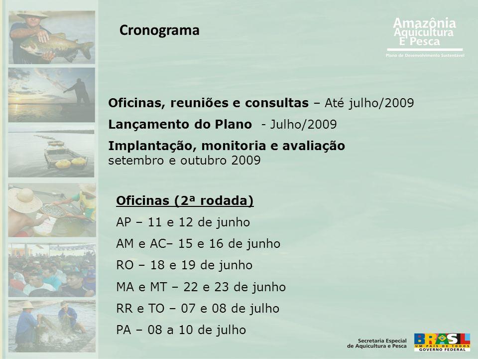 Cronograma Oficinas, reuniões e consultas – Até julho/2009