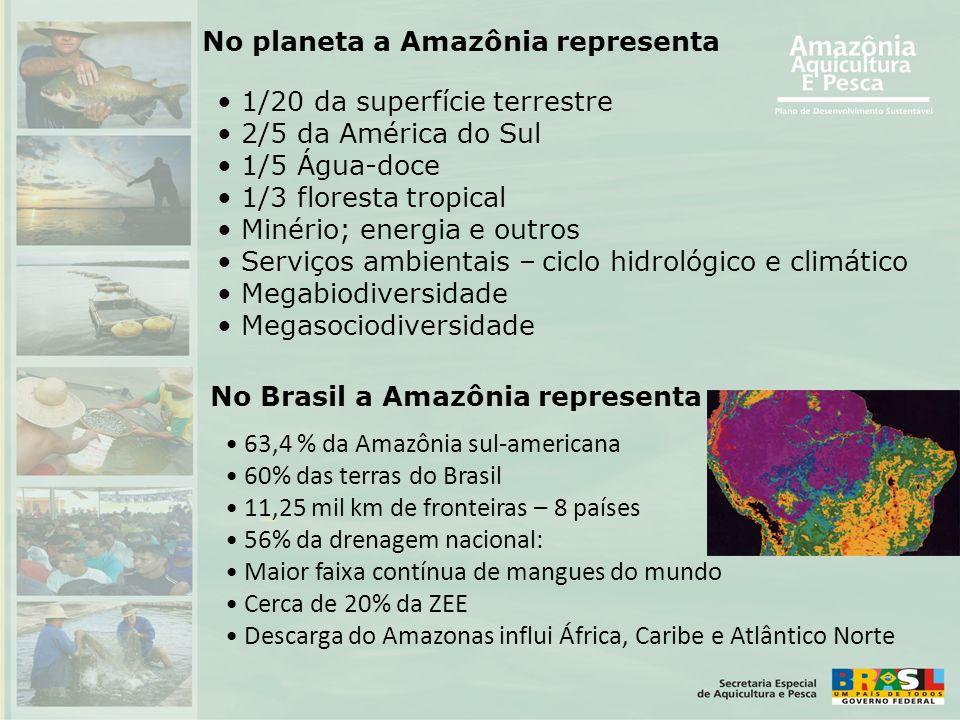 No planeta a Amazônia representa