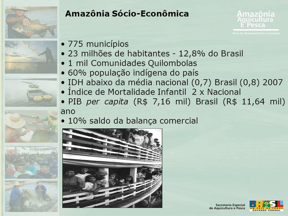 Amazônia Sócio-Econômica