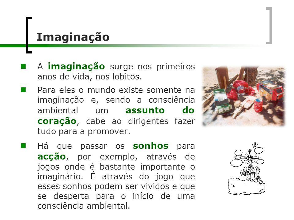 Imaginação A imaginação surge nos primeiros anos de vida, nos lobitos.