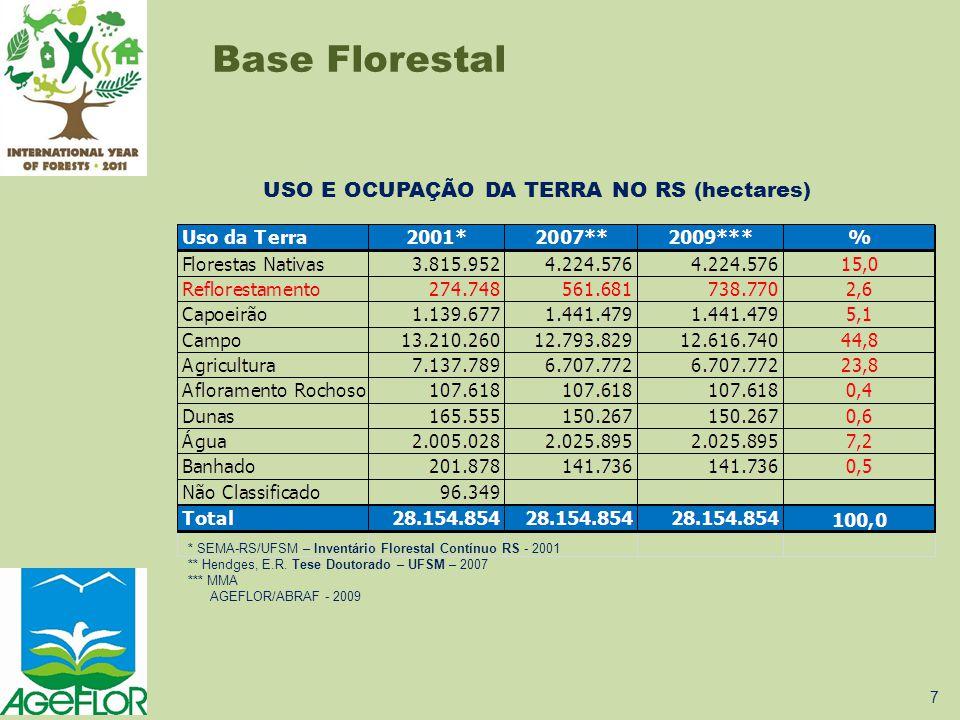 USO E OCUPAÇÃO DA TERRA NO RS (hectares)