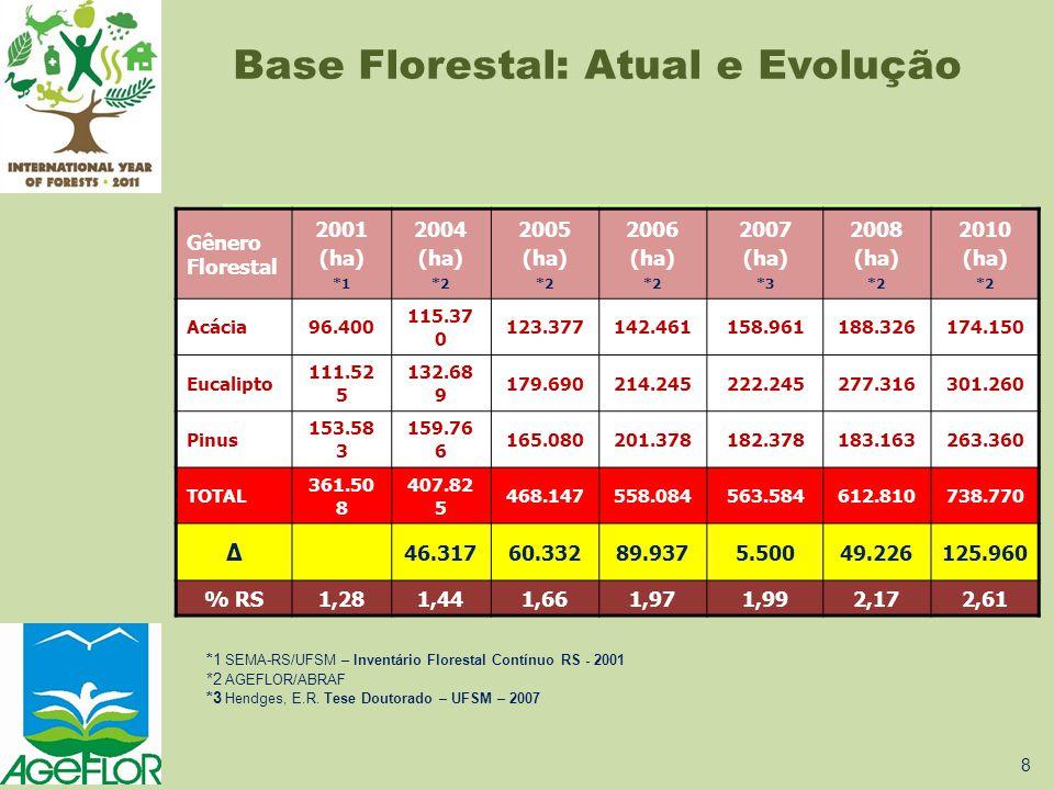 Base Florestal: Atual e Evolução