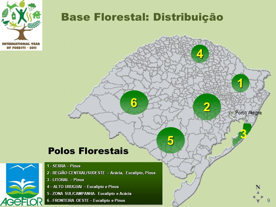 4 1 6 2 3 5 Base Florestal: Distribuição Polos Florestais 9