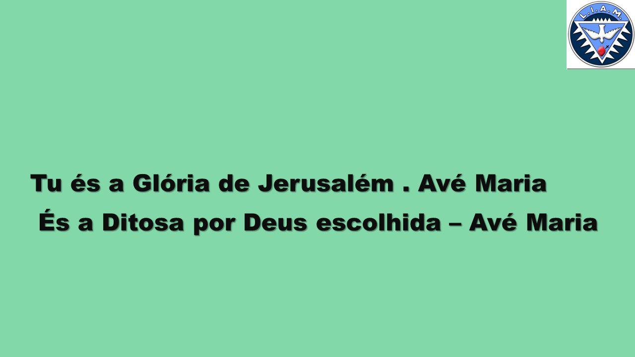 Tu és a Glória de Jerusalém . Avé Maria