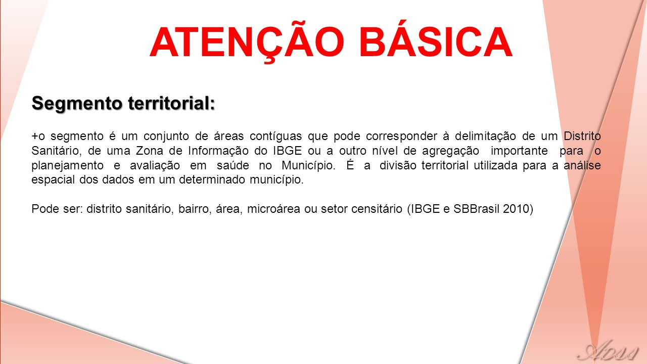 ATENÇÃO BÁSICA Segmento territorial: