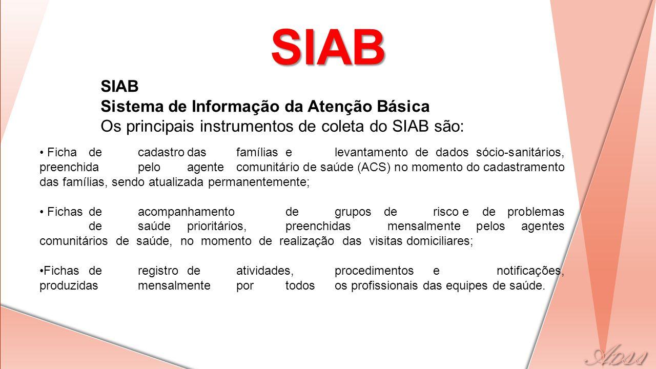 SIAB SIAB Sistema de Informação da Atenção Básica