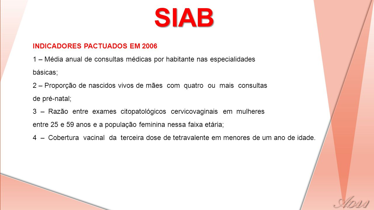 SIAB INDICADORES PACTUADOS EM 2006