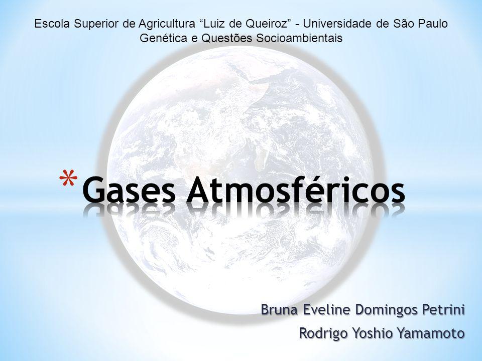 Bruna Eveline Domingos Petrini Rodrigo Yoshio Yamamoto