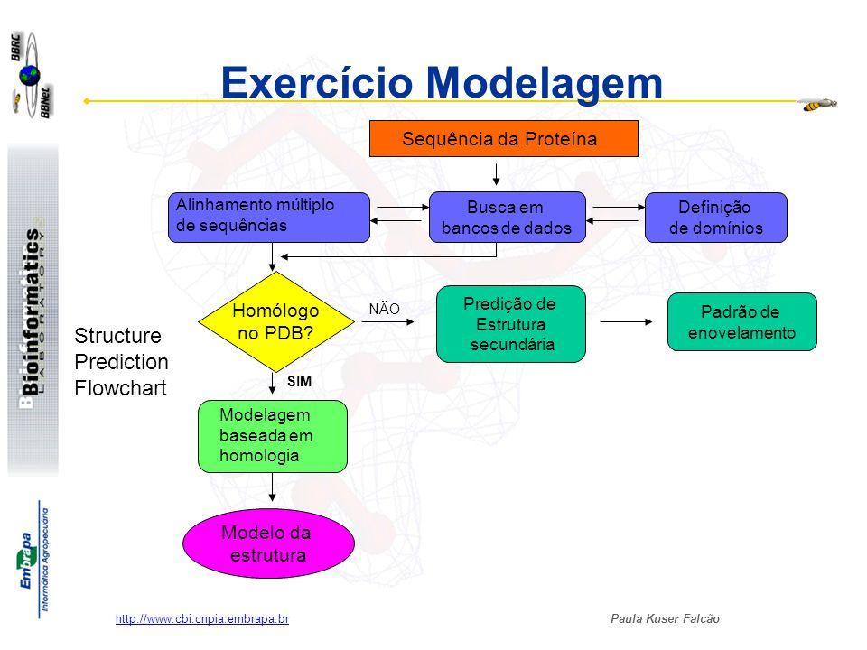 Exercício Modelagem Structure Prediction Flowchart