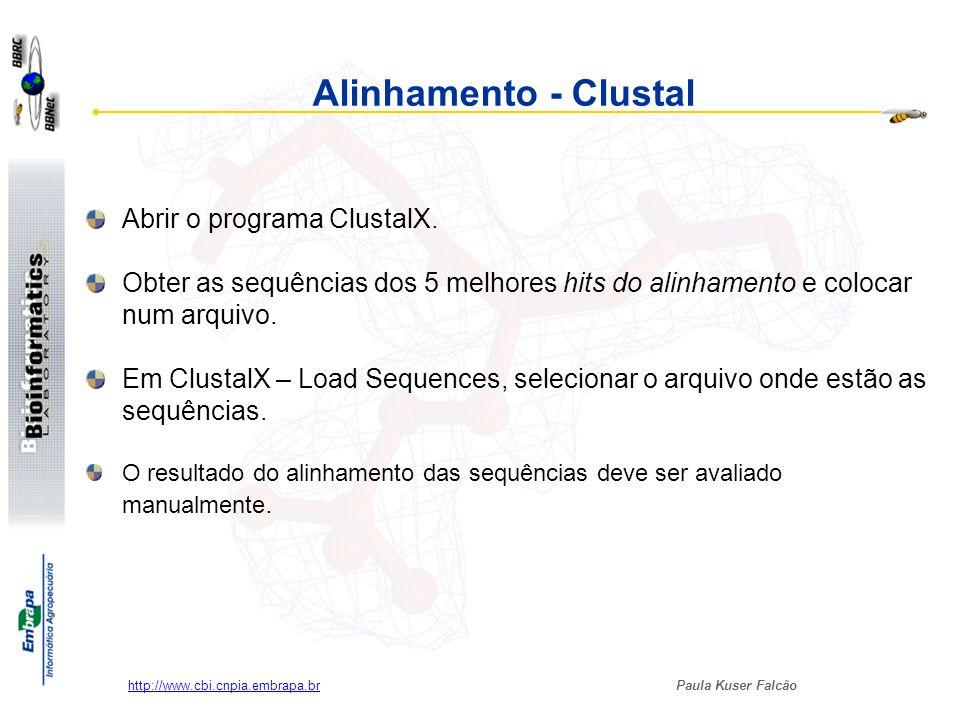 Alinhamento - Clustal Abrir o programa ClustalX.
