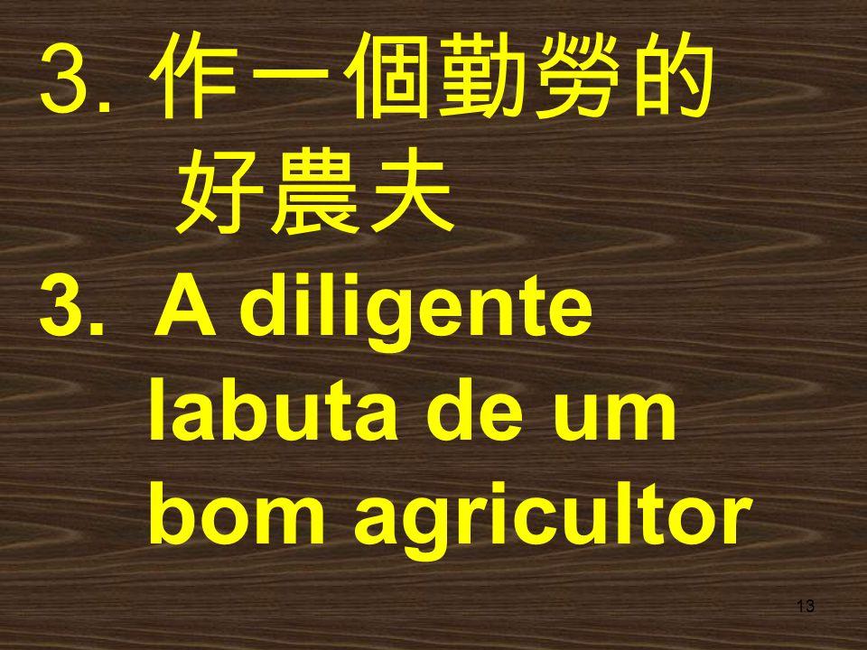 作一個勤勞的 好農夫 3. A diligente labuta de um bom agricultor