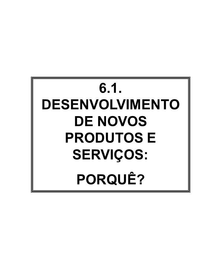 6.1. DESENVOLVIMENTO DE NOVOS PRODUTOS E SERVIÇOS:
