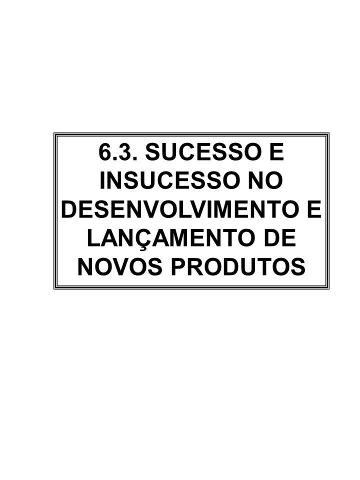 6.3. SUCESSO E INSUCESSO NO DESENVOLVIMENTO E LANÇAMENTO DE NOVOS PRODUTOS
