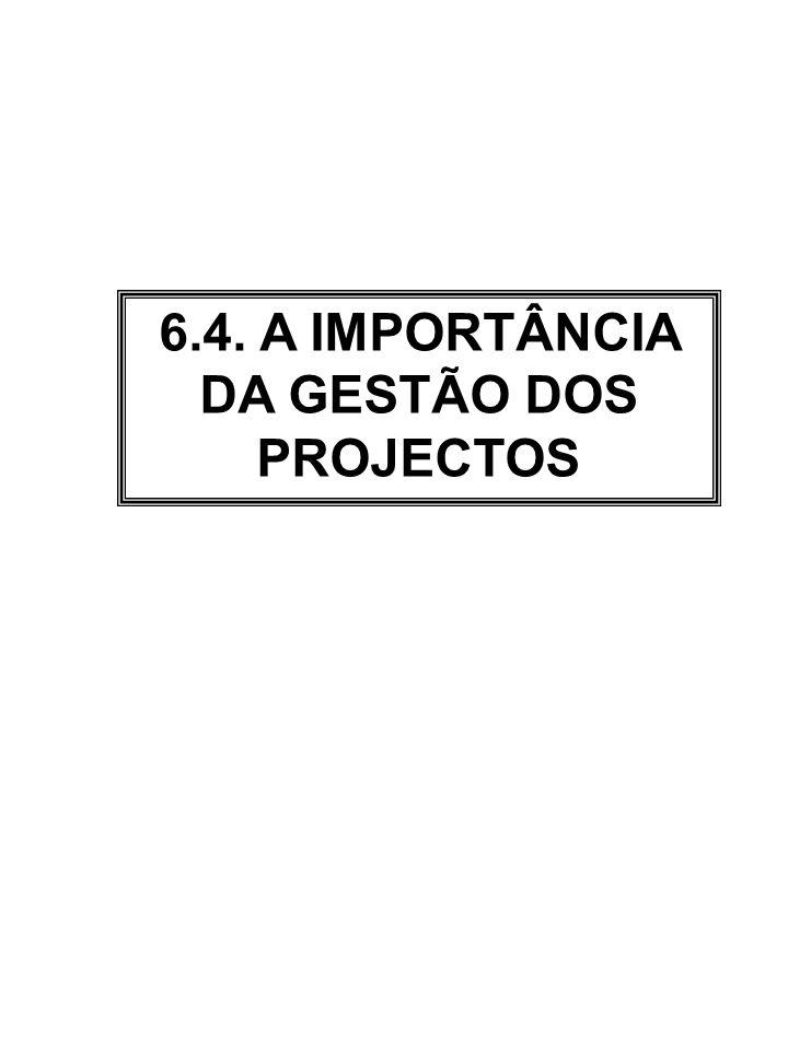 6.4. A IMPORTÂNCIA DA GESTÃO DOS PROJECTOS