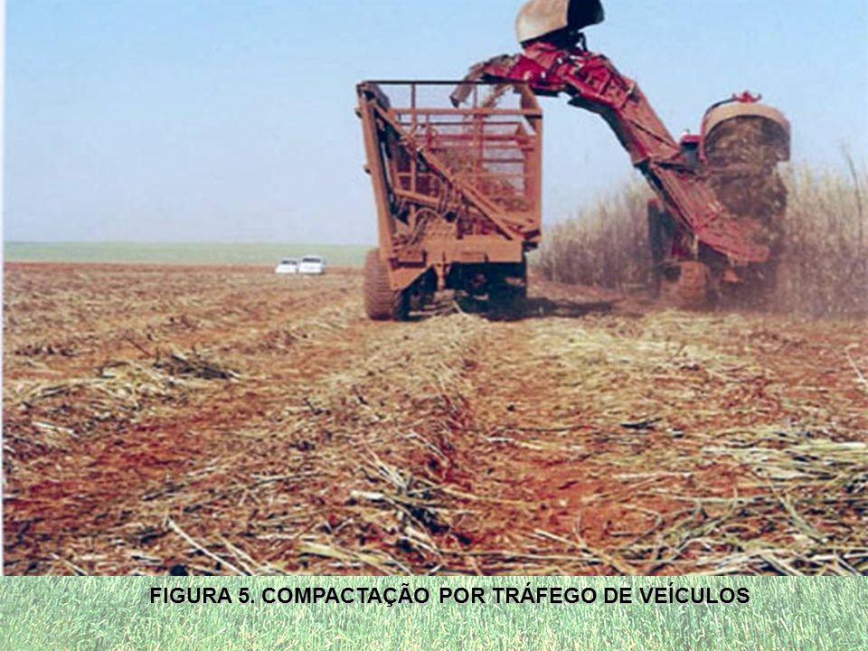 FIGURA 5. COMPACTAÇÃO POR TRÁFEGO DE VEÍCULOS