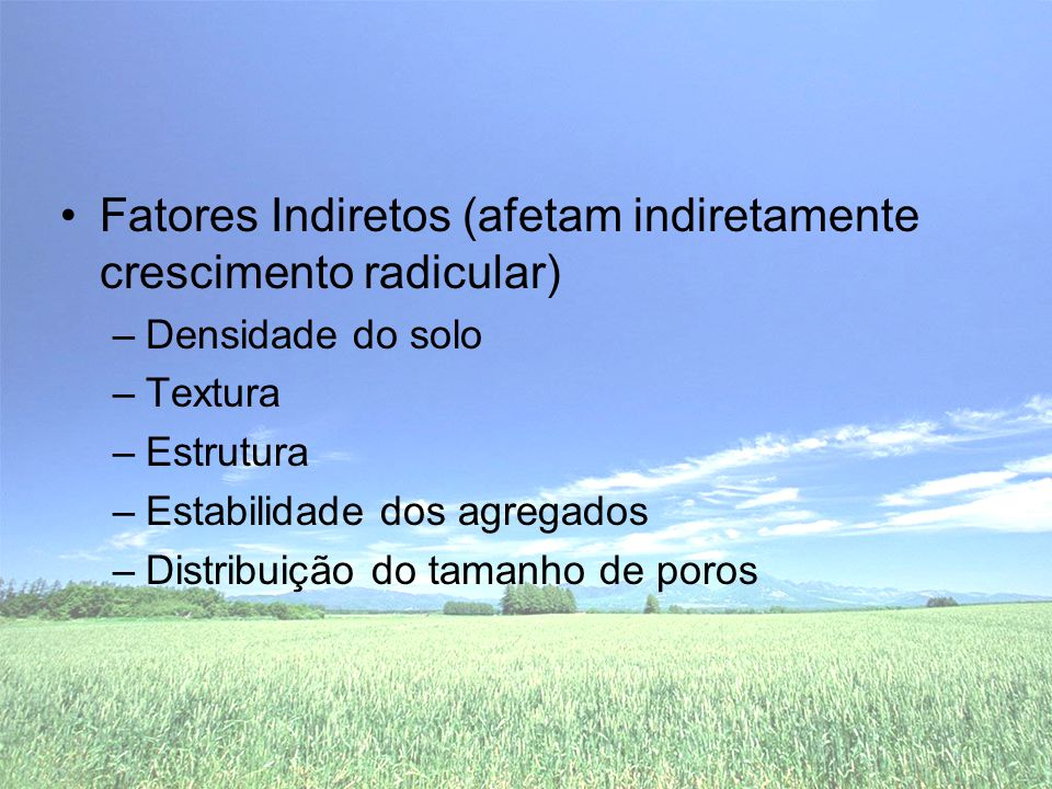 Fatores Indiretos (afetam indiretamente crescimento radicular)
