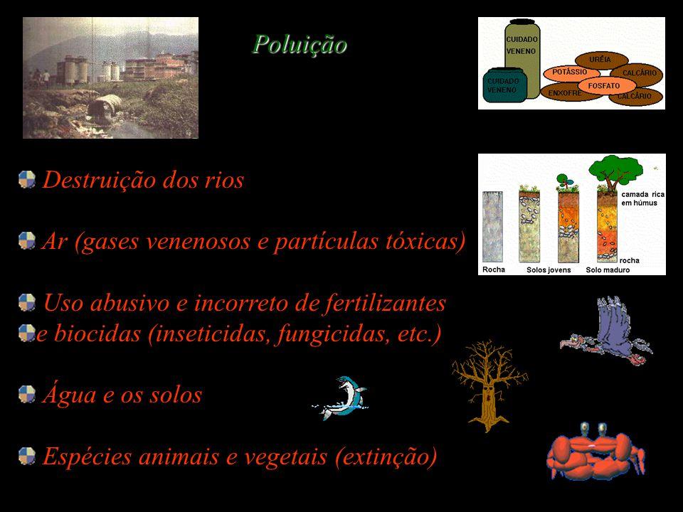 Poluição Destruição dos rios Ar (gases venenosos e partículas tóxicas)