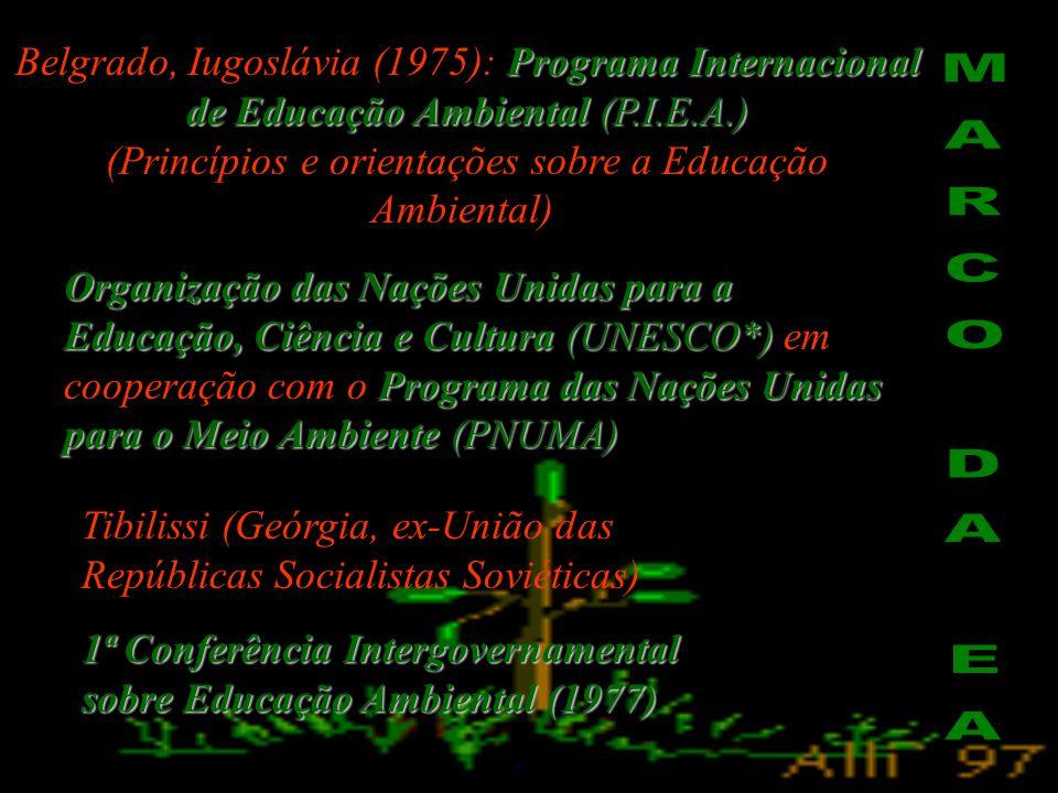 (Princípios e orientações sobre a Educação Ambiental)