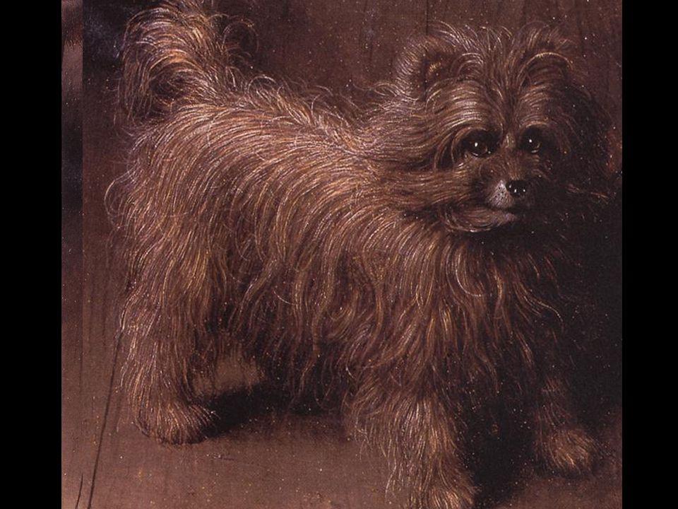 O cãozinho de estimação da senhora Arnolfini