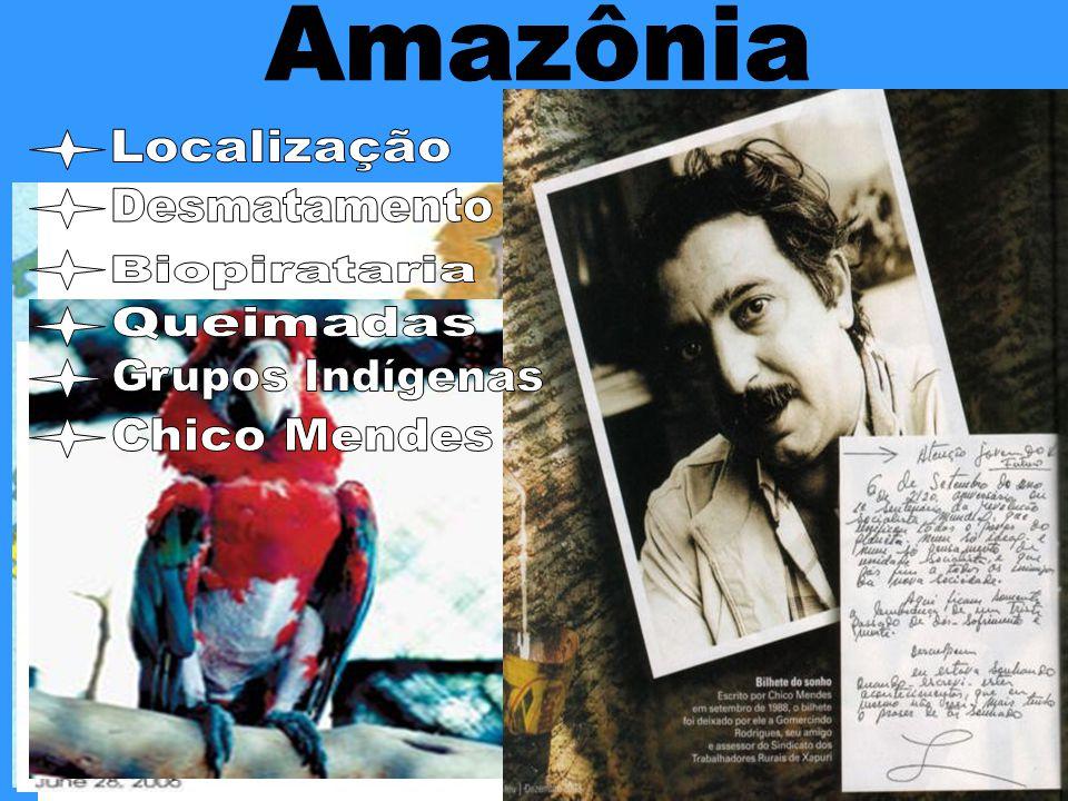 Amazônia Localização Desmatamento Biopirataria Queimadas Grupos Indígenas Chico Mendes
