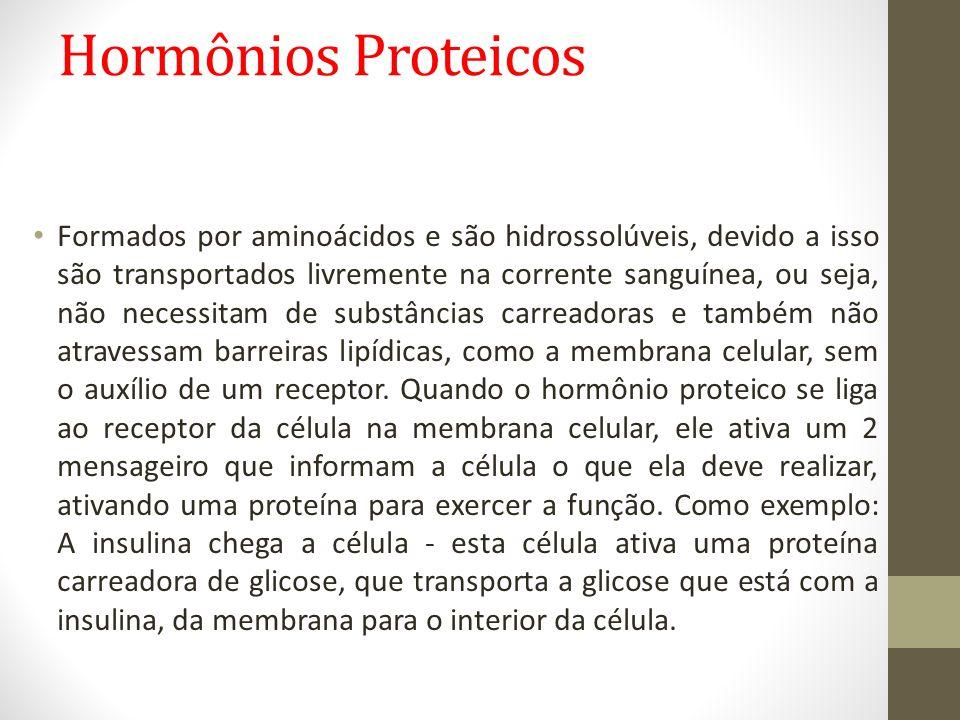 Hormônios Proteicos