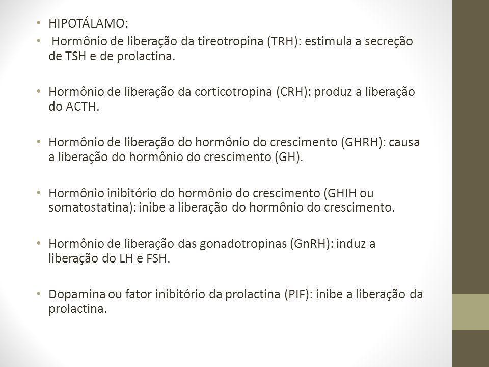HIPOTÁLAMO: Hormônio de liberação da tireotropina (TRH): estimula a secreção de TSH e de prolactina.