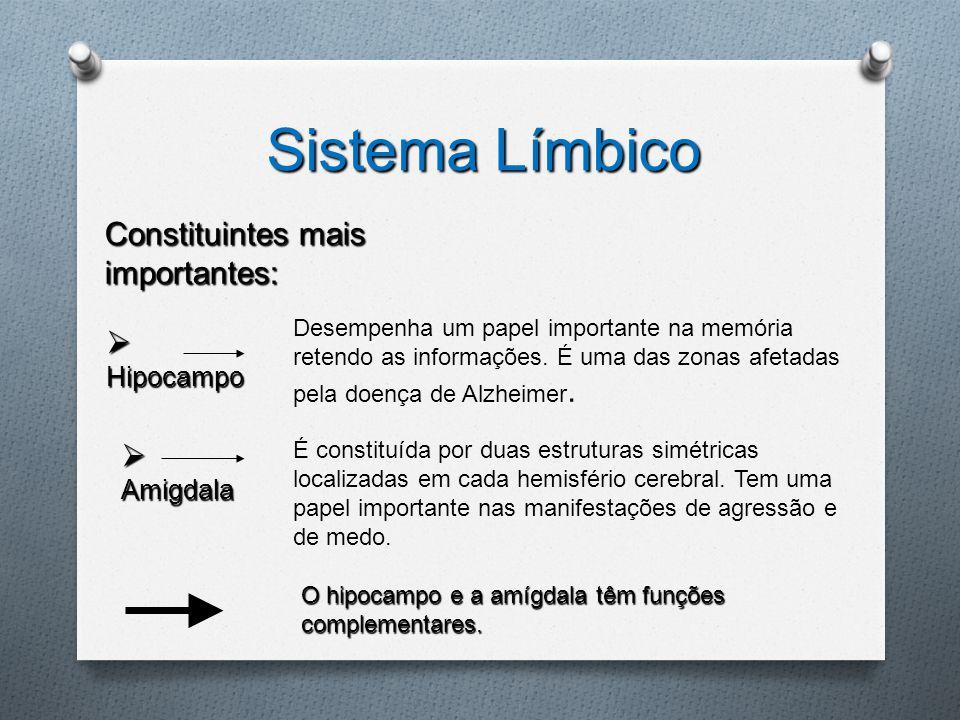Sistema Límbico Constituintes mais importantes: Hipocampo Amigdala