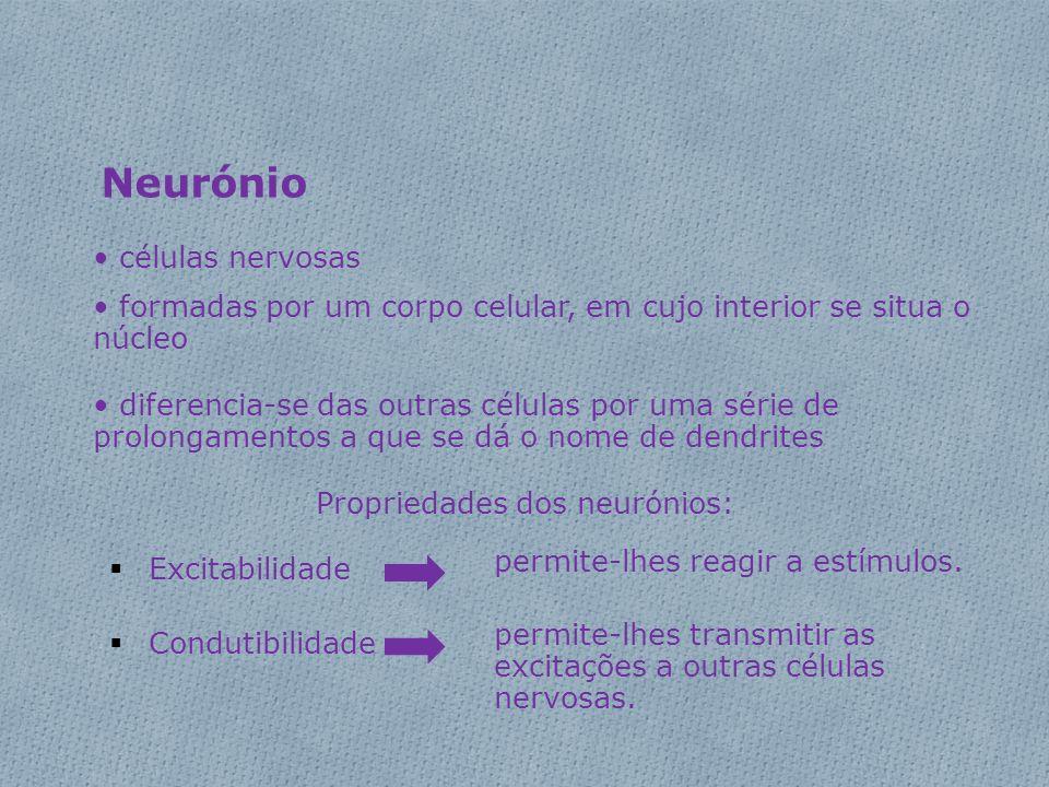Propriedades dos neurónios: