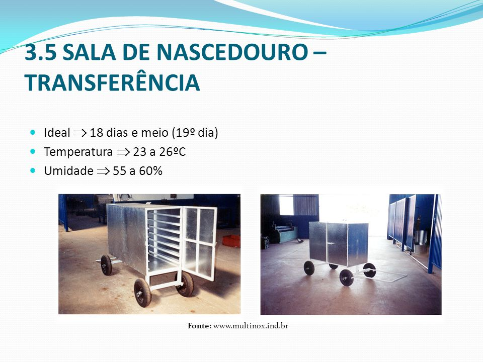 3.5 SALA DE NASCEDOURO – TRANSFERÊNCIA