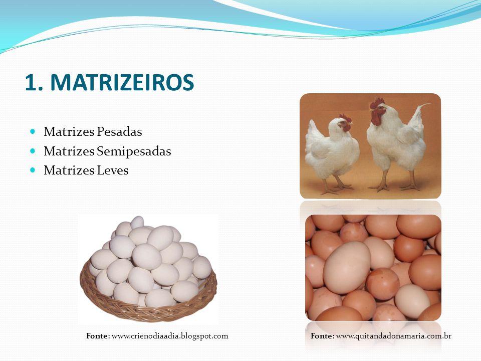 1. MATRIZEIROS Matrizes Pesadas Matrizes Semipesadas Matrizes Leves