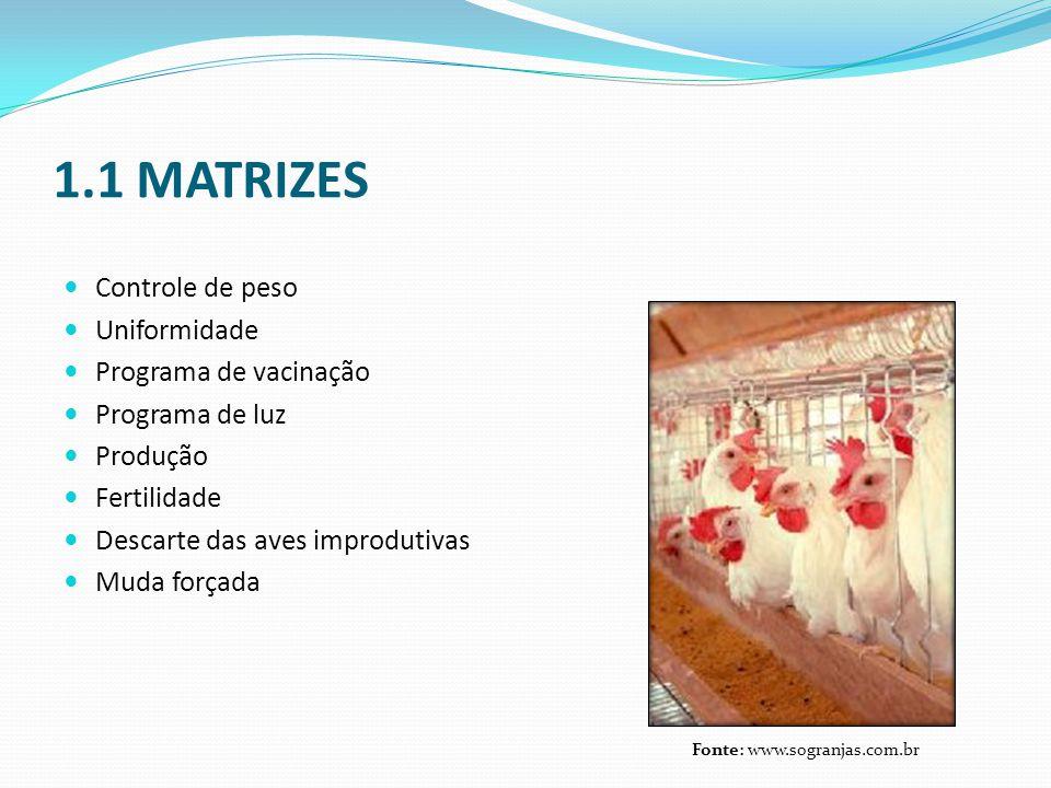 1.1 MATRIZES Controle de peso Uniformidade Programa de vacinação