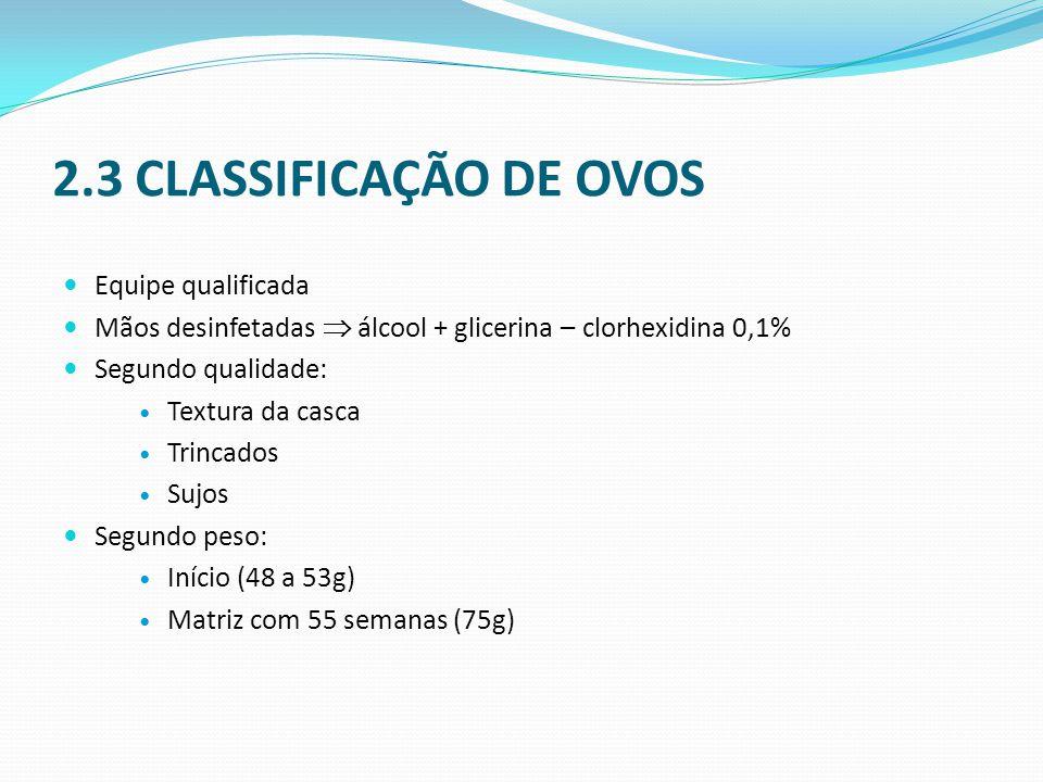 2.3 CLASSIFICAÇÃO DE OVOS Equipe qualificada
