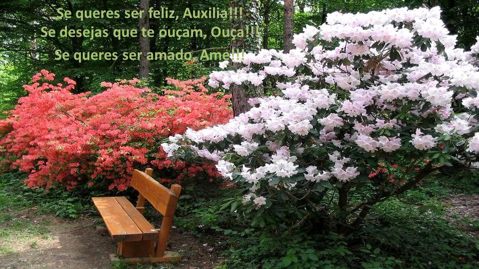Se queres ser feliz, Auxilia!!! Se desejas que te ouçam, Ouça!!!