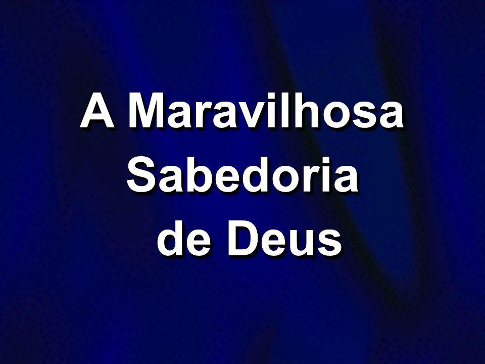 A Maravilhosa Sabedoria de Deus