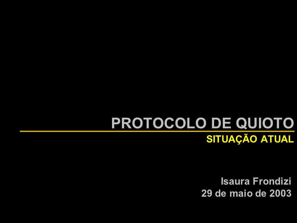 PROTOCOLO DE QUIOTO SITUAÇÃO ATUAL Isaura Frondizi 29 de maio de 2003
