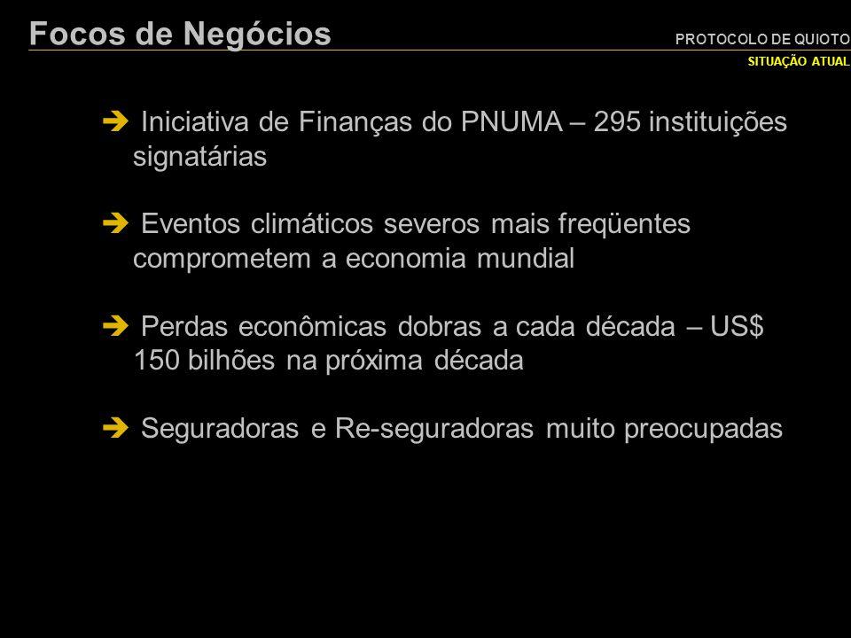 PROTOCOLO DE QUIOTO Focos de Negócios. SITUAÇÃO ATUAL. Iniciativa de Finanças do PNUMA – 295 instituições signatárias.