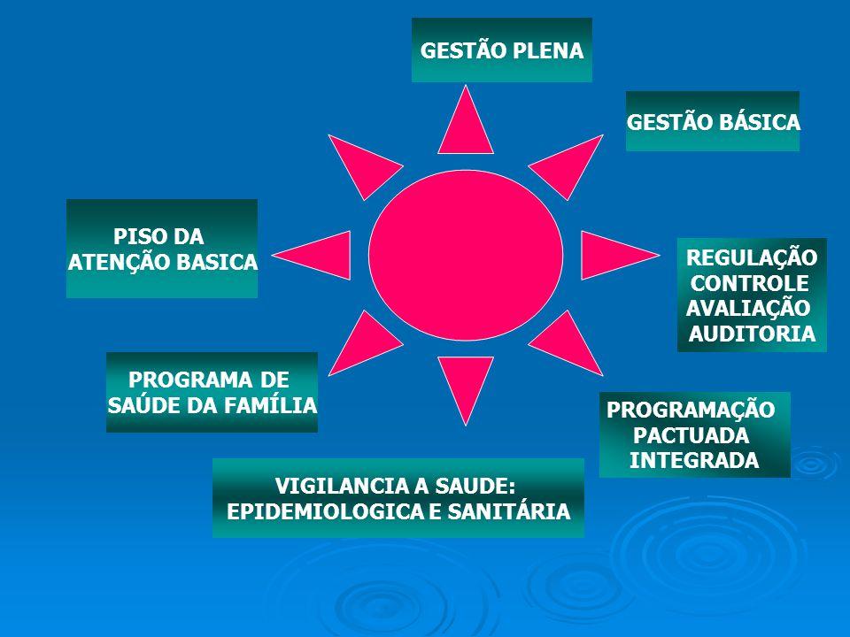 EPIDEMIOLOGICA E SANITÁRIA