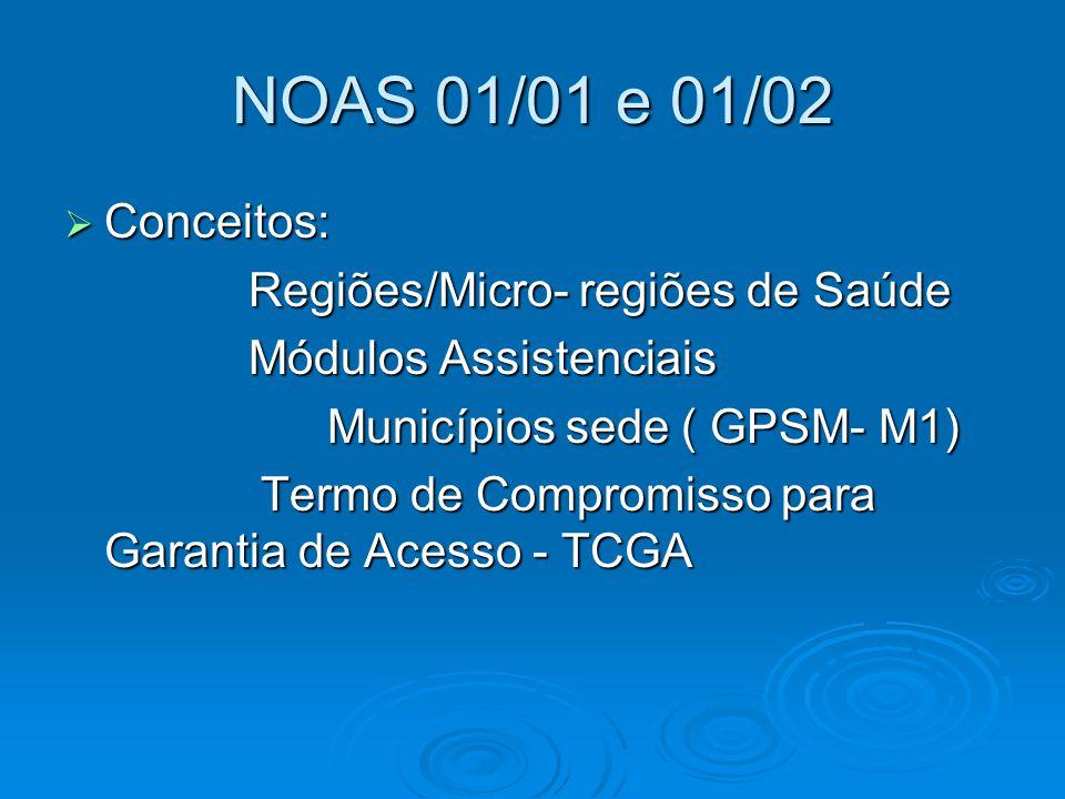 NOAS 01/01 e 01/02 Conceitos: Regiões/Micro- regiões de Saúde