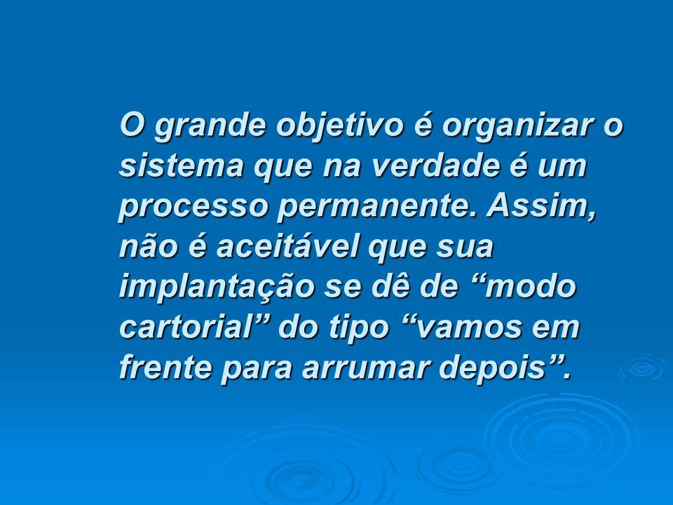 O grande objetivo é organizar o sistema que na verdade é um processo permanente.
