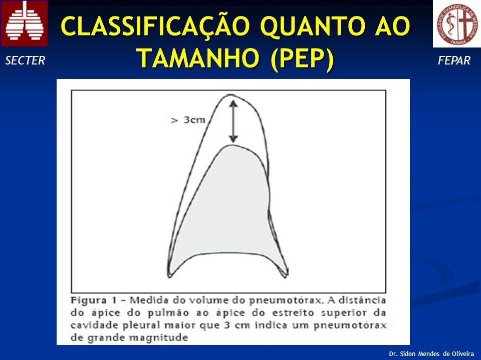 CLASSIFICAÇÃO QUANTO AO TAMANHO (PEP)