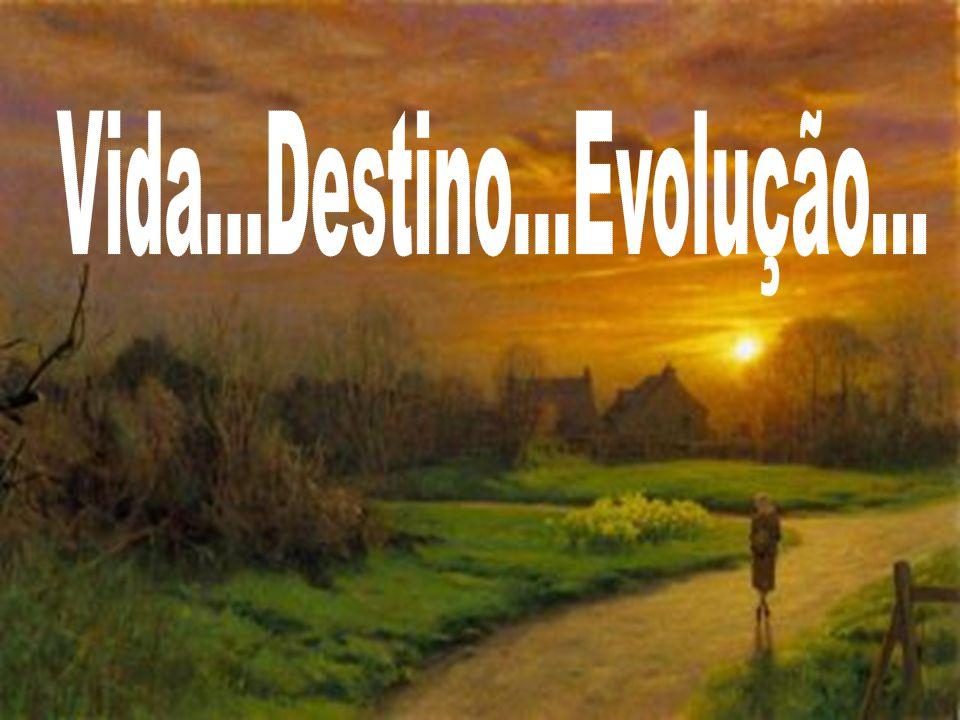 Vida...Destino...Evolução...