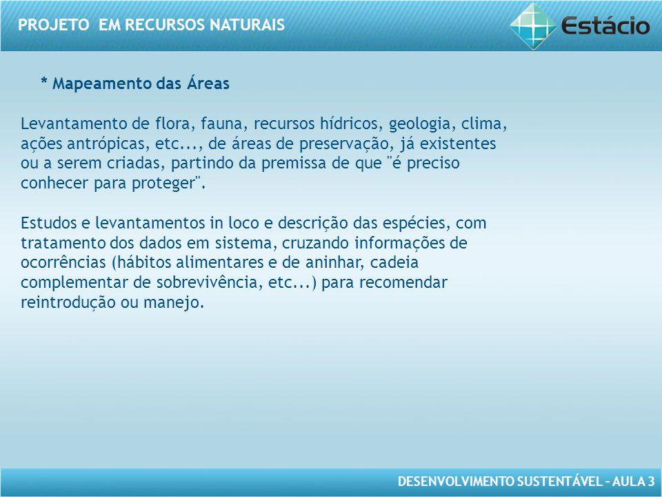 * Mapeamento das Áreas