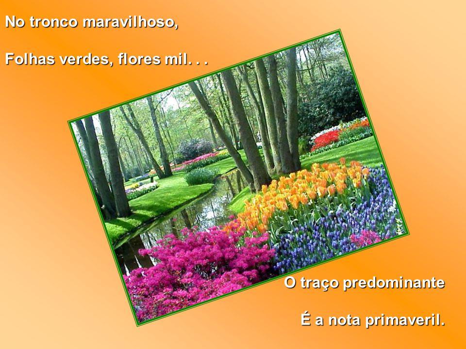 No tronco maravilhoso, Folhas verdes, flores mil. . . O traço predominante É a nota primaveril.